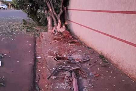 Veículo descontrolado sobe em calçada, destrói lixeira e arranca árvore em Palmeira d´Oeste
